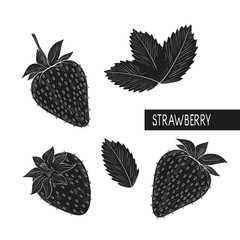Strawberry. Set. Berries, castings. Silhouette. Black pattern on