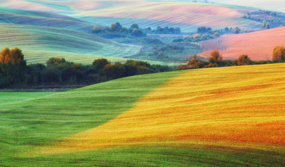 picturesque hilly field. green wavy field