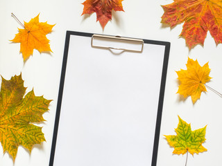 Autumn composition of yellow maple leaves and blank papper on white background. Flat lay, top view, copy space