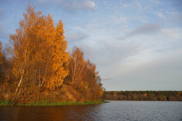 autumn landscape with river and trees