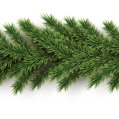 Fir branches horizontal seamless pattern. Vector seamless Christmas tree background.