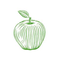 Green Vectorized Ink Sketch of Apple Illustration