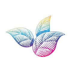 Rainbow Colored Vectorized Ink Sketch of Leaves Illustration