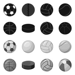 Vector design of sport and ball icon. Collection of sport and athletic vector icon for stock.