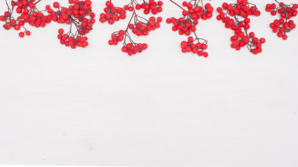 Autumn composition. Frame made of rowan berries. Flat lay, top view, copy space