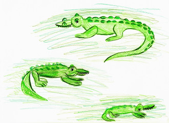 Three green crocodiles. Children's drawing