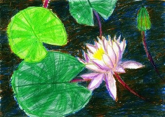 Water-lily against a dark background. Children's drawing, wax crayons