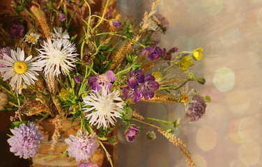 A beautiful still-life with wildflowers. Pastel colors, selective focus. The concept of a holiday. March 8, Mother's Day, World Environment Day. Selective focus, copy space.