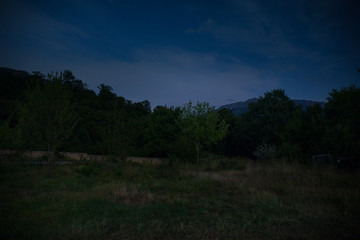 Landscape of night forest with green meadow in bright starry night or view of milky way in the woodland