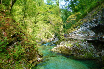 Vintgar gorge with wooden walkway and river Radovna flowing through it near to Bled lake, Slovenia