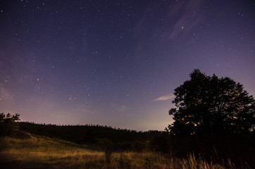 sternenhimmel mit baum und wiese