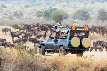 Photographers shooting wildebeest in the Masai Mara