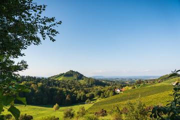 Austria Vineyards Sulztal wine street area south Styria , wine country. Tourist destination