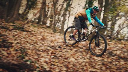 Mountain biker in forest
