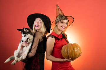 Two happy young women in black witch halloween costumes on party over white  background. Cute e693a640c9e3