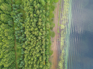 Aerial view to coastline of river Volga with green trees at summertime.