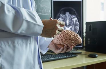 Doctor demonstarting human brain anatomy and MRI brain on background