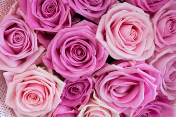 Bouquet of roses as background, texture
