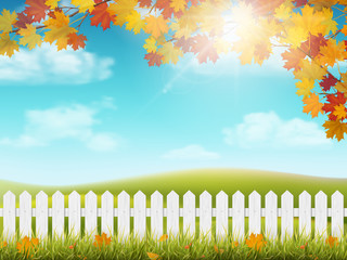 Autumn rural landscape with white wooden fence. Maple tree branch with colorful  leaves. Grass and fallen leaves. View on meadow with hills and sky with clouds and sun.