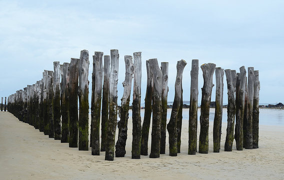 Wooden wave breakers,St Malo,Brittany,France