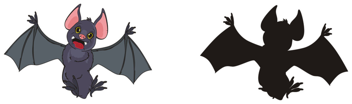 bat, animal, wings, dracula, claws, fangs, blood, vampire, cave, holiday, halloween, two, shadow