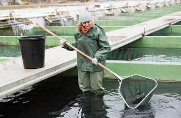 Female standing in water catching fish on sturgeon farm
