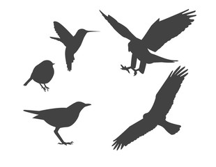 simple black silhouettes of birds on a white background