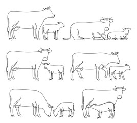 Continuous line drawing of cows and calves