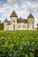 Le Château de Savigny lès Beaune