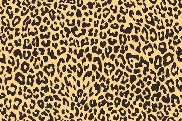 Leopard seamless pattern. Animal print. Vector background.