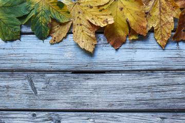 Herbstlicher Hintergrund mit Textfreiraum. Buntes Laub auf blauem Holz.