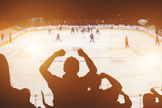 fans on the hockey match