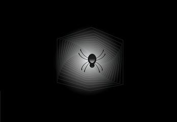 Spider dark web