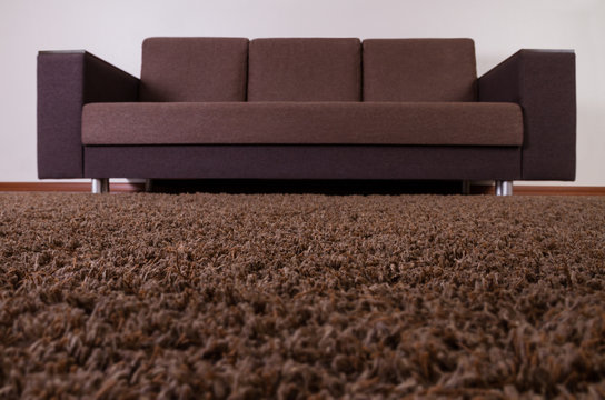 Close up on Carpet with sofa bed in the background