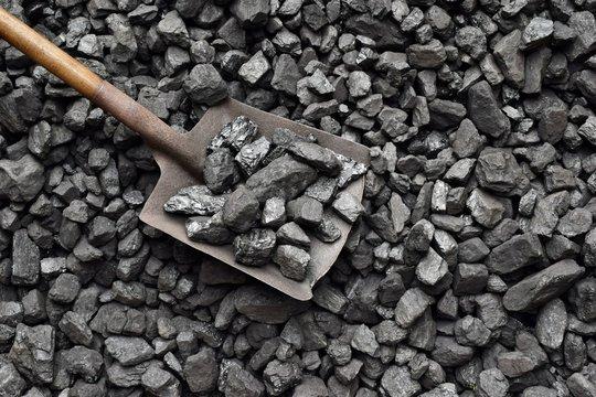 Shovel and coal