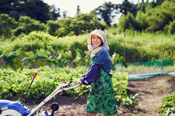 農作業中の女性
