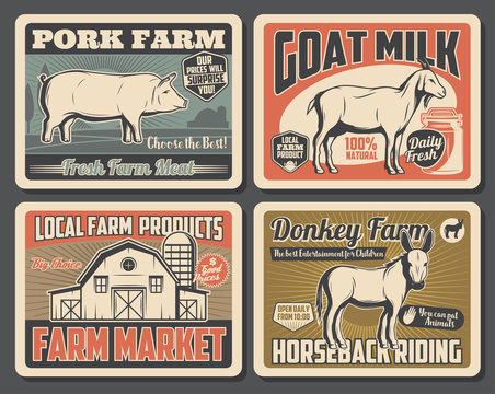 Cattle farm meat and milk market products posters