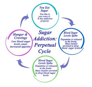 Sugar Addiction: The Perpetual Cycle