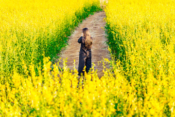Woman seen from behind in a field of yellow flowers