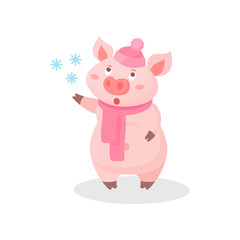 Funny pig wearing knitted hat and scarf, cute little piglet cartoon character catching snowflakes vector Illustration on a white background