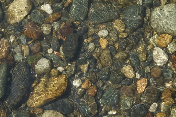 Image of the bottom of a mountain river.