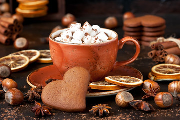 Homemade  hot chocolate in mugs   with marshmallow