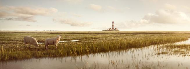 Aluminium Prints North Sea Wiesenlandschaft mit Schafen und Leuchtturm an der Nordsee