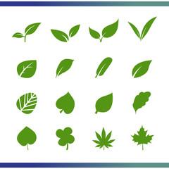 Leaf set vector icon. Kind of leaf simple icons illustration for your website, blog, social media, articles, infographics design.