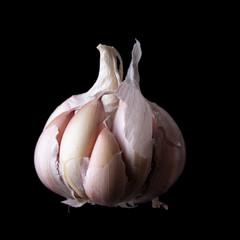 Whole garlic bulb isolated on black background.