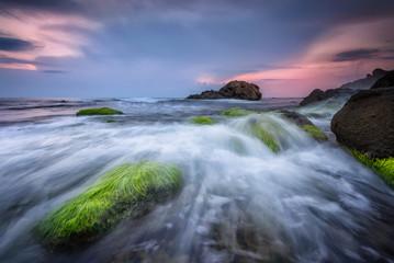 Fresh green morning / Rocky beach seascape at sunrise