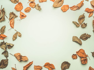 dry autumn leaves lined on white background, top view, place for text, frame