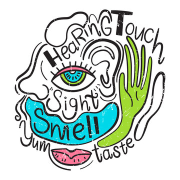 Vector illustration of the 5 human senses. Sight, taste, hearing, smell, touch. Hand drawn style