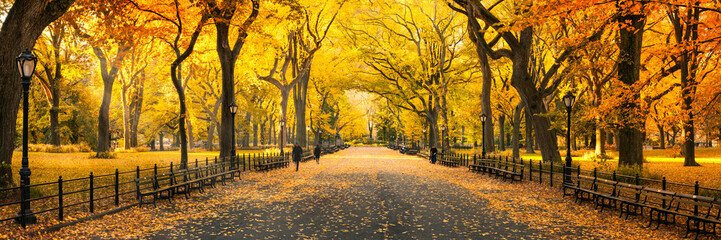 Herbst Panorama im Central Park in New York City, USA Fototapete