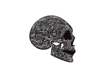 Skull icon black and white side view background